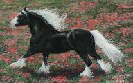 Silver Black Horse 20 Widescreen Wallpaper