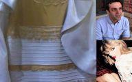 Black And Blue Dress Original 20 High Resolution Wallpaper