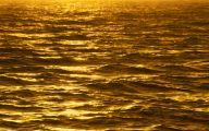 Black And Gold Wallpaper  61 Free Wallpaper