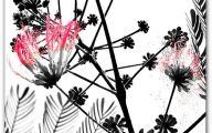 Black White And Pink Backgrounds 18 Background