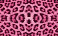 Hot Pink Backgrounds For Desktop 19 Cool Wallpaper