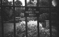 Vintage Black White Photography 1 Free Hd Wallpaper