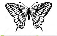 Black And White Images Of Butterflies  26 Free Wallpaper