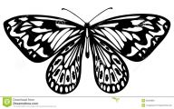Black And White Images Of Butterflies  28 Hd Wallpaper