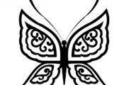 Black And White Images Of Butterflies  5 Free Wallpaper
