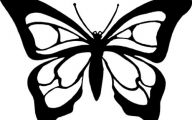 Black And White Images Of Butterflies  8 Wide Wallpaper