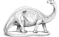 Black And White Images Of Dinosaurs  2 Background Wallpaper