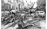 Black And White Images Of Dinosaurs  6 Cool Wallpaper