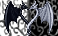 Black And White Images Of Dragons  10 Cool Wallpaper