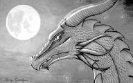 Black And White Images Of Dragons  15 Background