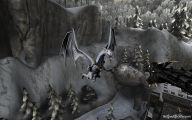 Black And White Images Of Dragons  21 Background