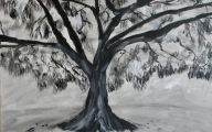 Black And White Images Of Trees  10 Hd Wallpaper