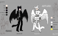 Black And White Anime Wolves  19 Hd Wallpaper