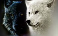 Black And White Anime Wolves  23 Wide Wallpaper