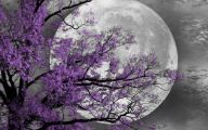 Black And White Moon Images  1 Hd Wallpaper