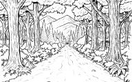 Black And White Pictures Anime Forest  36 Widescreen Wallpaper