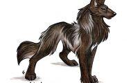 Black Anime Wolf  22 Cool Hd Wallpaper