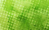 Lime Green And Black Wallpaper  11 Hd Wallpaper