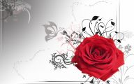 Red And Black Rose Wallpapers  6 Cool Hd Wallpaper