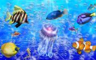 Cute Fish 1 Hd Wallpaper