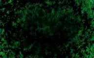 Green And Black Wallpaper 1 Widescreen Wallpaper