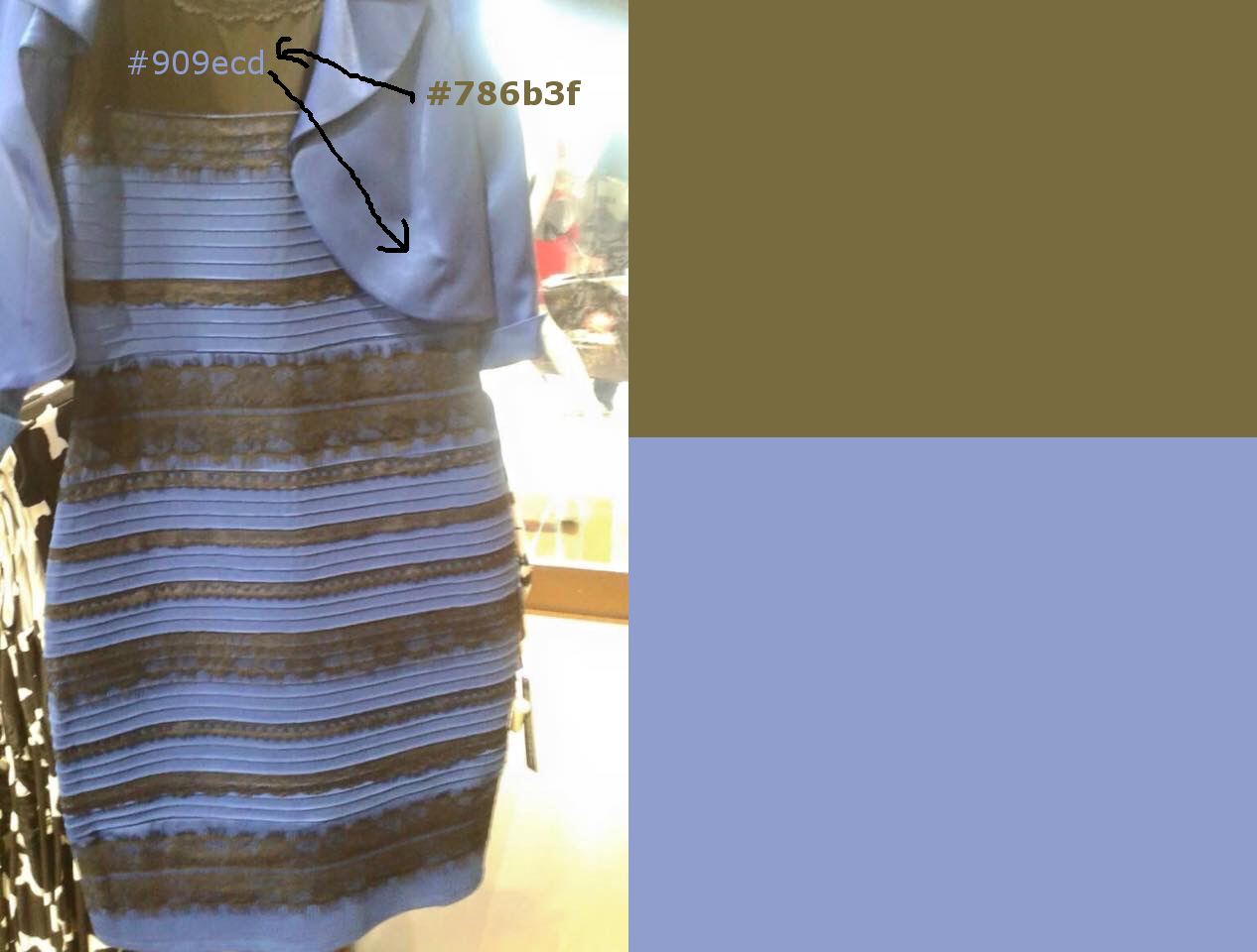 White and gold dress or blue and black backgrounds
