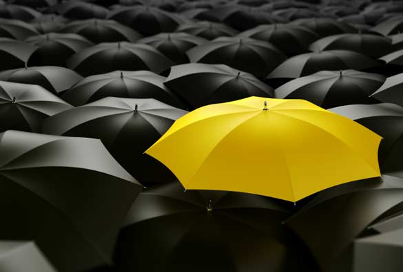 Black And Yellow Colors Meaning 43 Background
