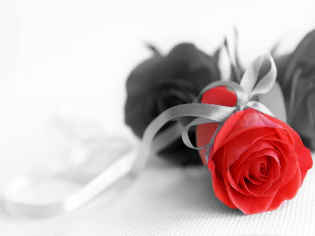 Red And Black Colors 11 Cool Hd Wallpaper