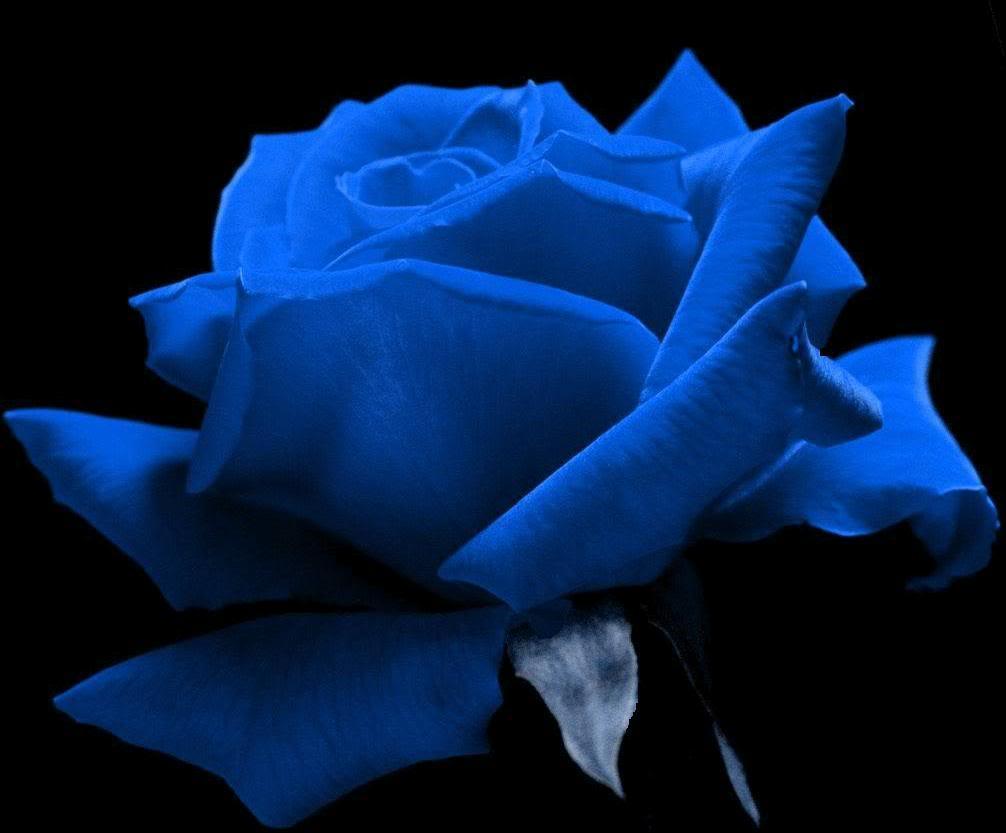 Black And Blue colors 32 Desktop Background ...