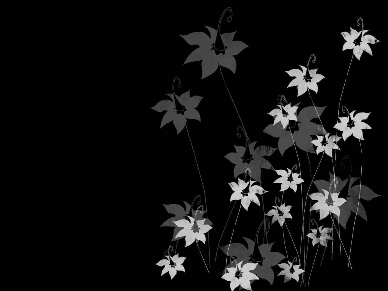 Floral Wallpaper With Black Background 24 Desktop Wallpaper