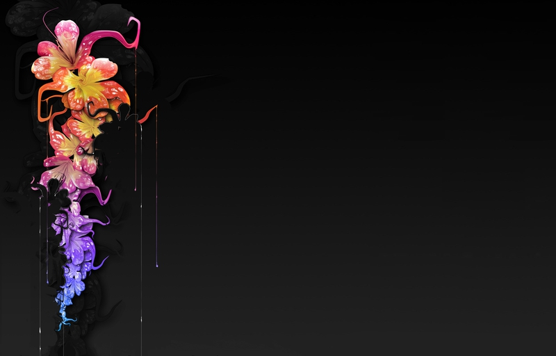 Free Colorful Flower Wallpaper Downloads: Floral Wallpaper With Black Background 3 Cool Wallpaper