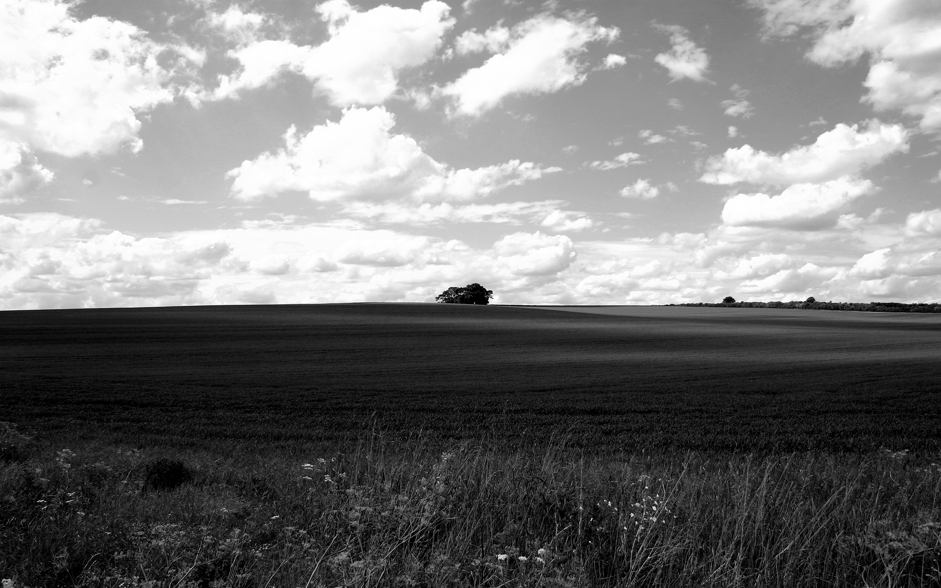 Black And White Landscape Photography 15 Free Hd Wallpaper