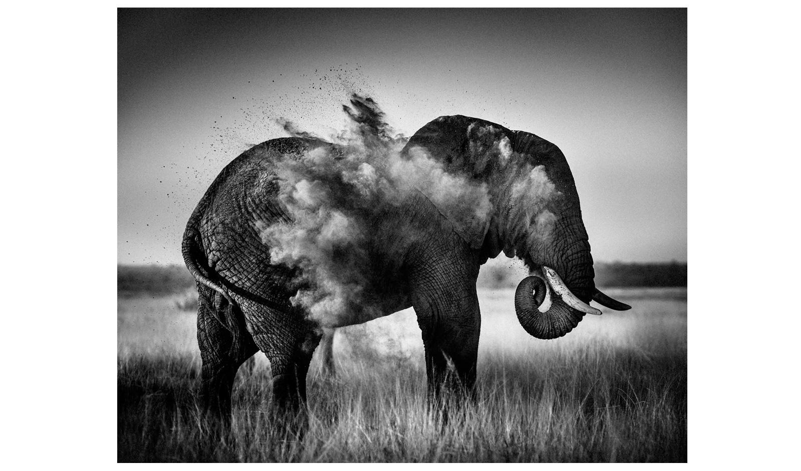 Black And White Photography Magazine 16 Desktop Wallpaper