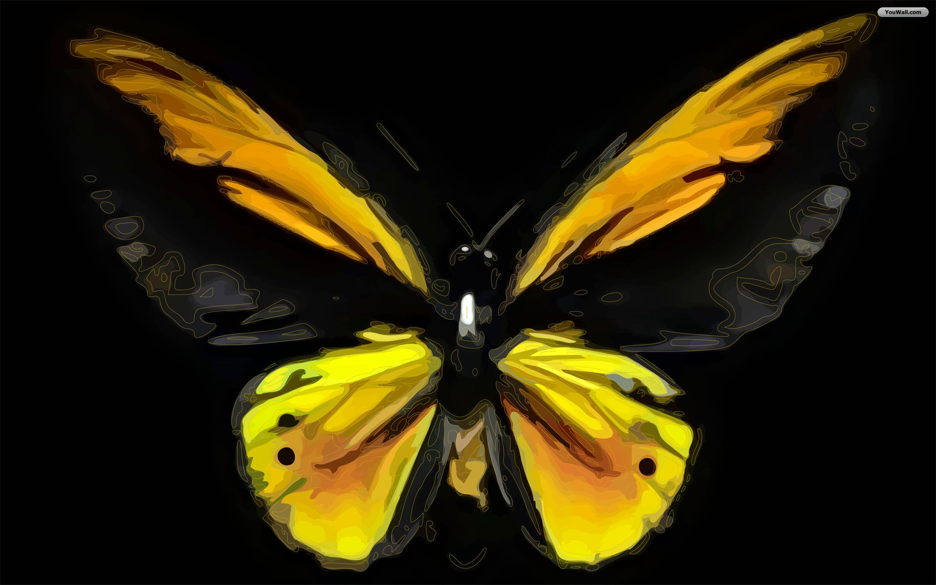 Black And Yellow Wallpapers 6 Free Hd Wallpaper ...