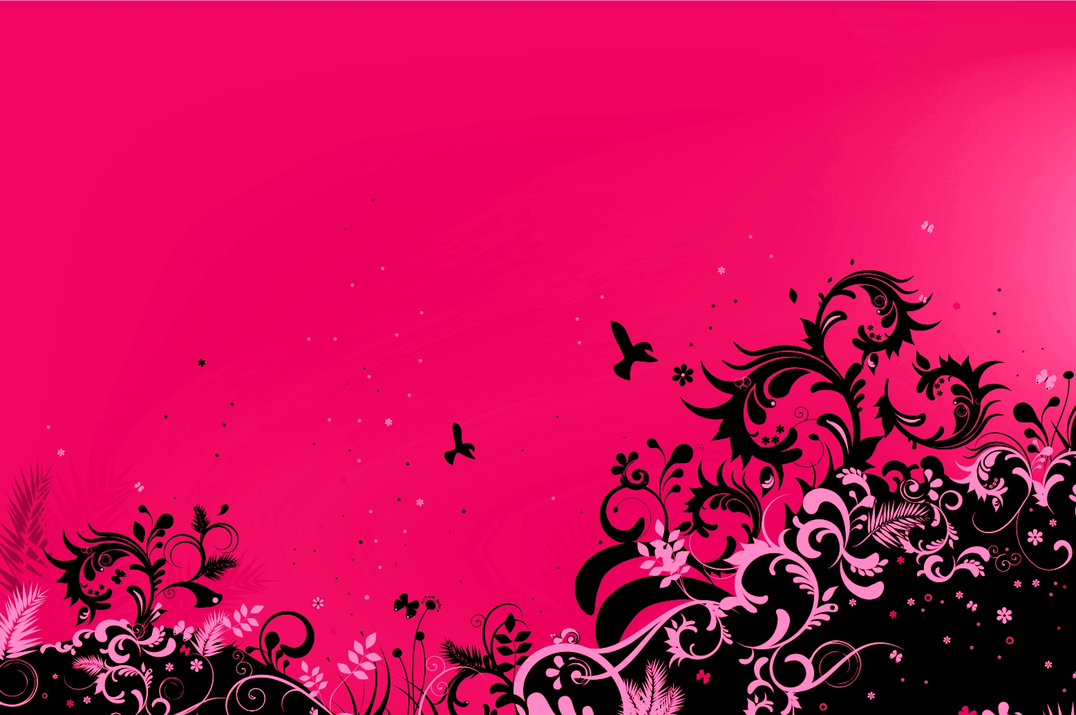 hot pink wallpapers for desktop - photo #19