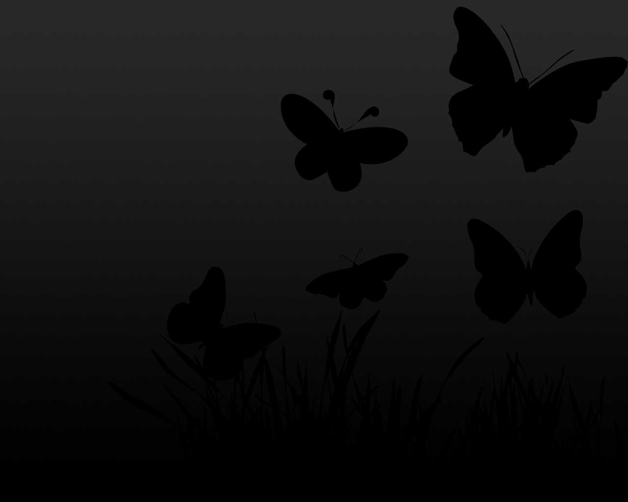 black and white images of butterflies 22 free wallpaper