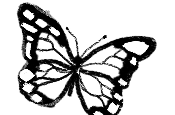 Black And White Images Of Butterflies  24 Cool Wallpaper