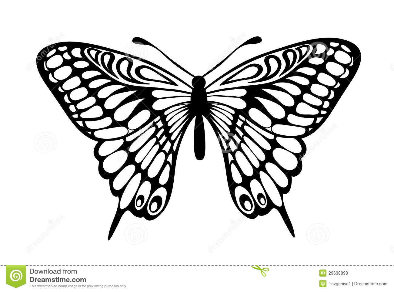 real butterflies coloring pages - photo#32