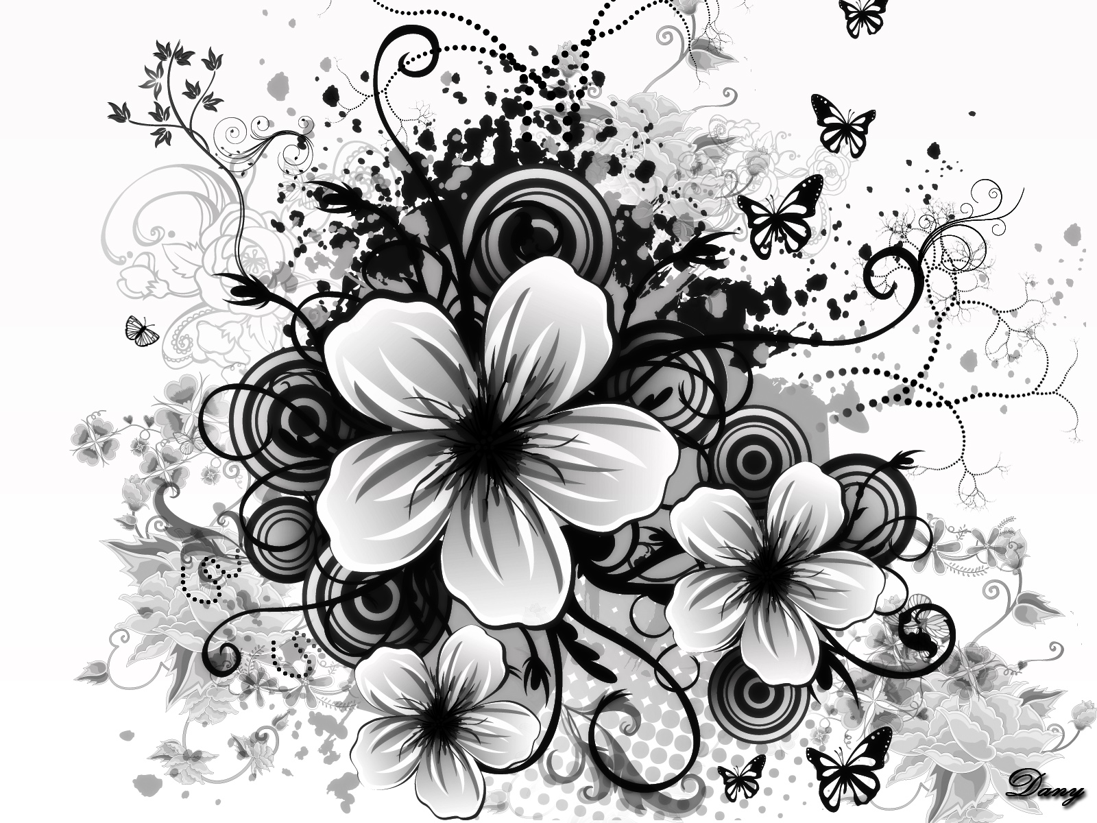 Black And White Images Of Flowers 7 Background ...