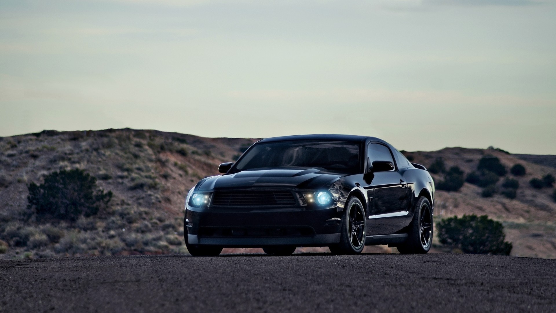 Black Ford Mustang 25 Background Wallpaper
