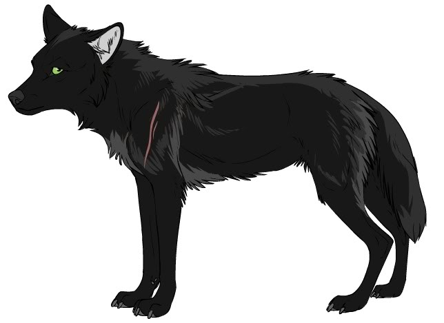 Black And White Anime Wolves 7 High Resolution Wallpaper ...