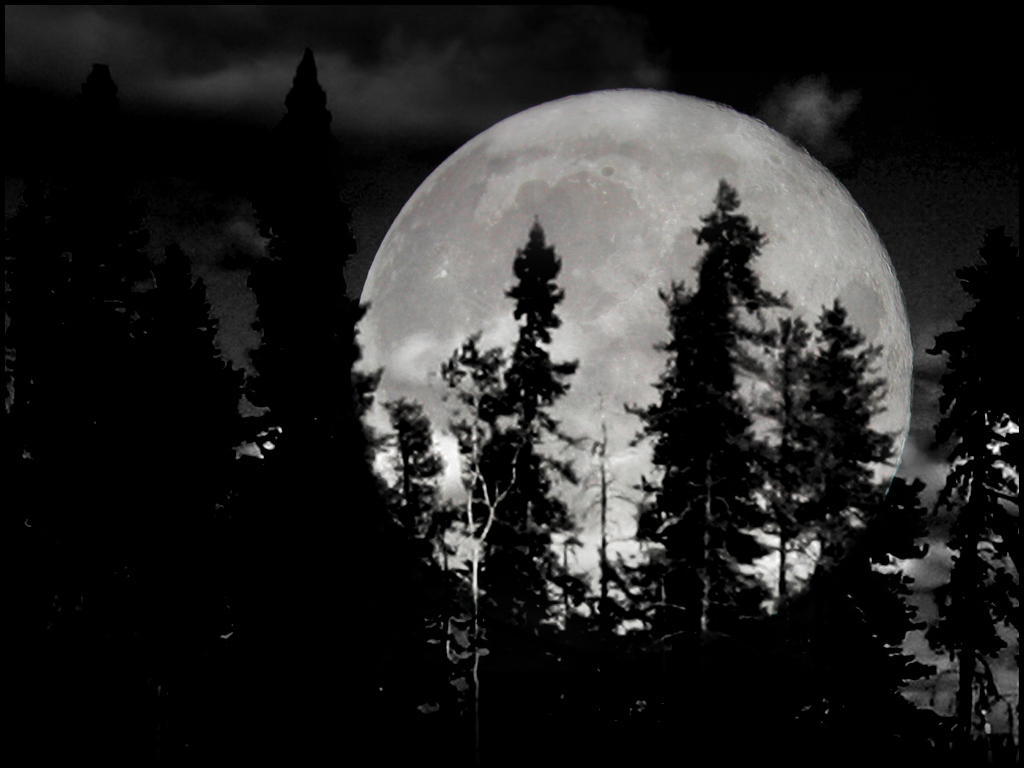 Black And White Moon 6 Background - Hdblackwallpaper.com