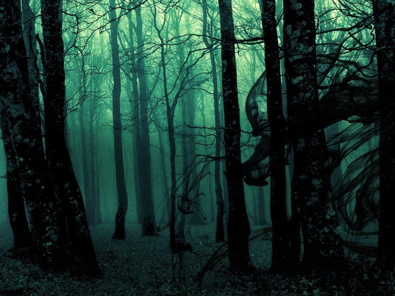 Black and white pictures anime forest 1 desktop background - Anime forest background ...
