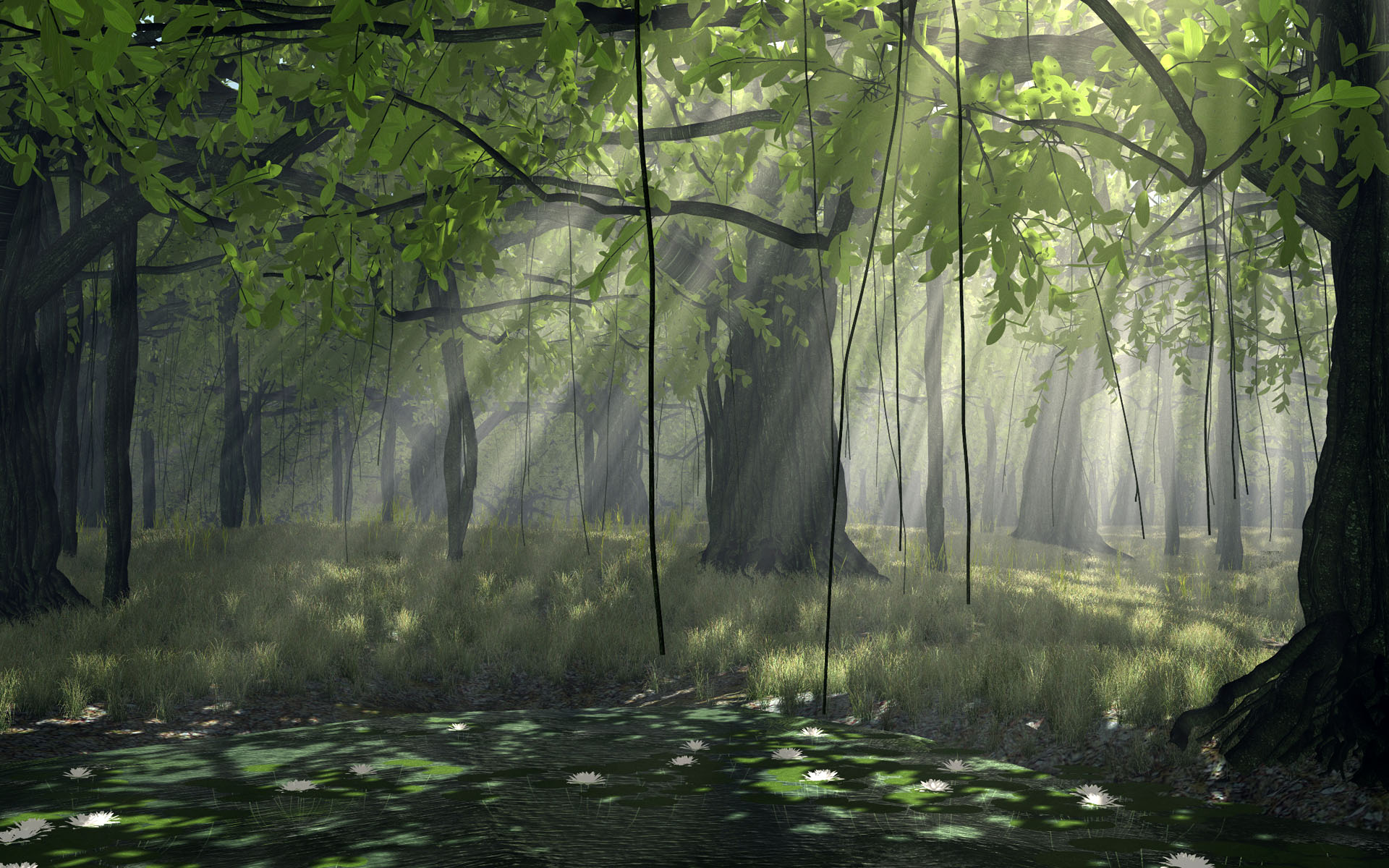 Black and white pictures anime forest 37 background - Anime forest background ...
