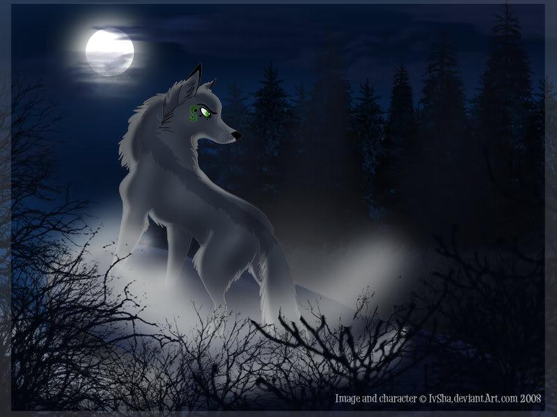 Black anime wolf 5 cool hd wallpaper - Anime wolf wallpaper ...