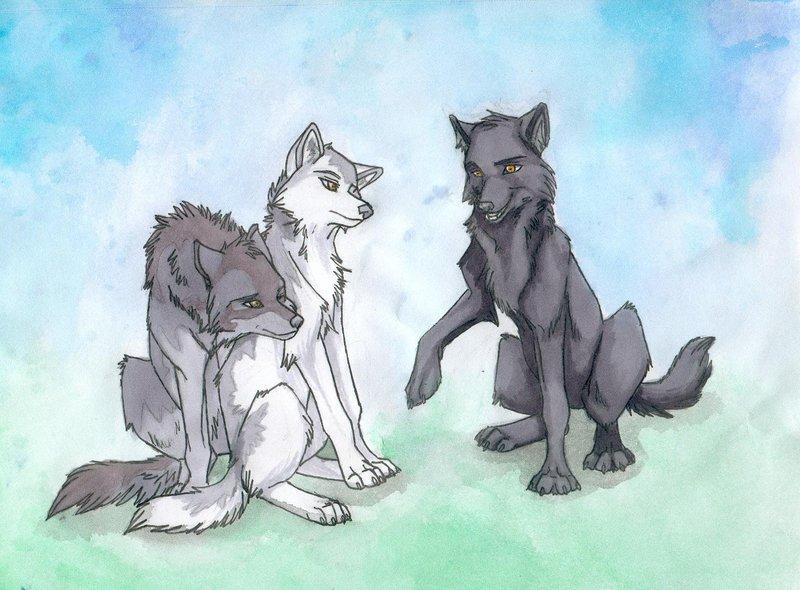 Black anime wolf 8 wide wallpaper - Anime wolf wallpaper ...