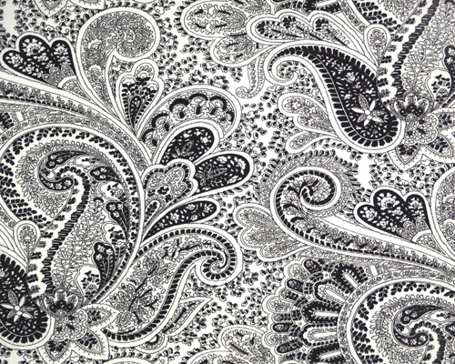 Black And White Curtain 18 Widescreen Wallpaper
