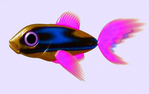 Cute Fish Wallpaper