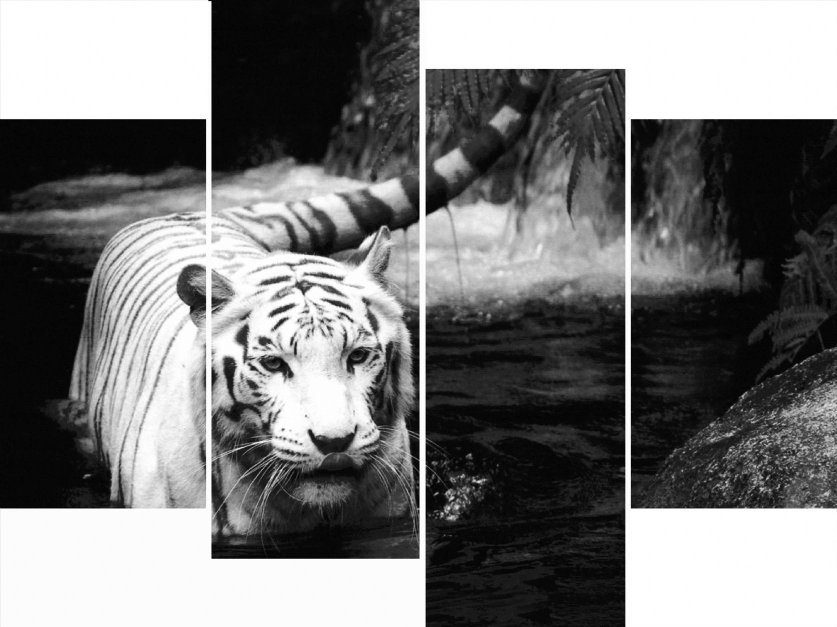 Black And White Canvass 25 Free Wallpaper