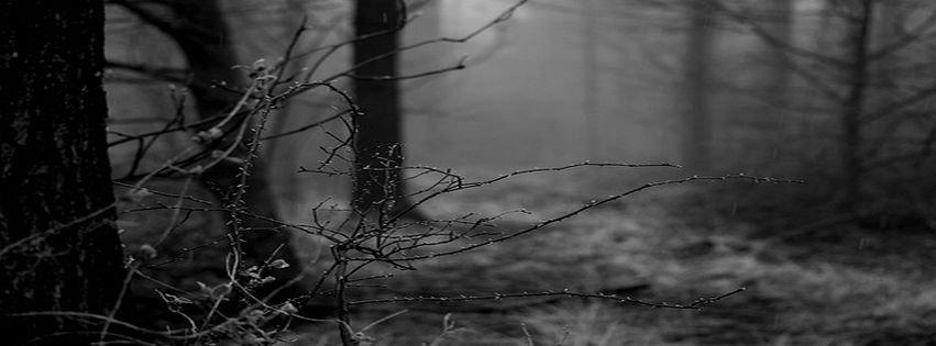 Black Winter 1 Widescreen Wallpaper